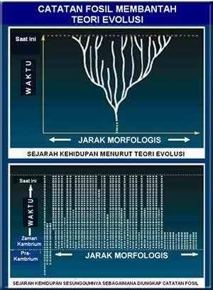 Sejarah Kehidupan Menurut Teori Evolusi